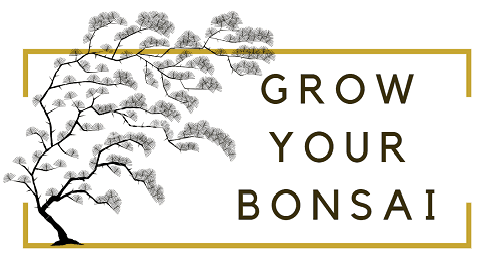 Grow Your Bonsai